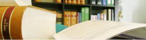 lexbcn abogados de familia