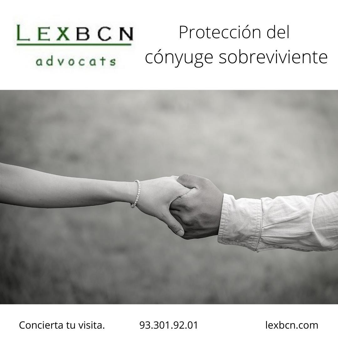 Derechos hereditarios del viudo o  de la viuda , Protección del cónyuge sobreviviente